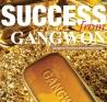 Success from Gangwon - Gangwon Province Investment Guide 이미지